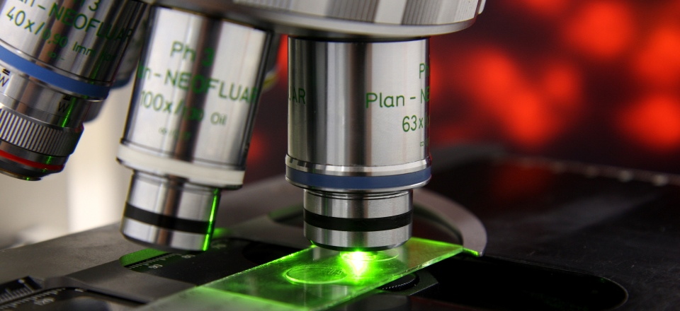 What does a Nanotechnologist study?